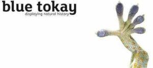 Blue Tokay logo